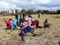 Afrika-Freiburg-Kipepeo April 2017 16